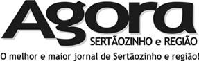 Check jornalagorasertaozinho.com.br's SEO